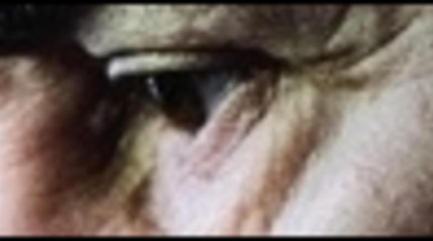 Sorties DVD : Frost/Nixon et Le lutteur