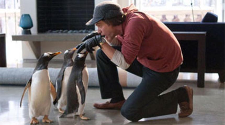 Premières images de Mr. Popper's Penguins