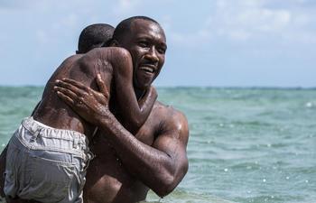 L'erreur monumentale de la finale des Oscars 2017 enfin expliquée