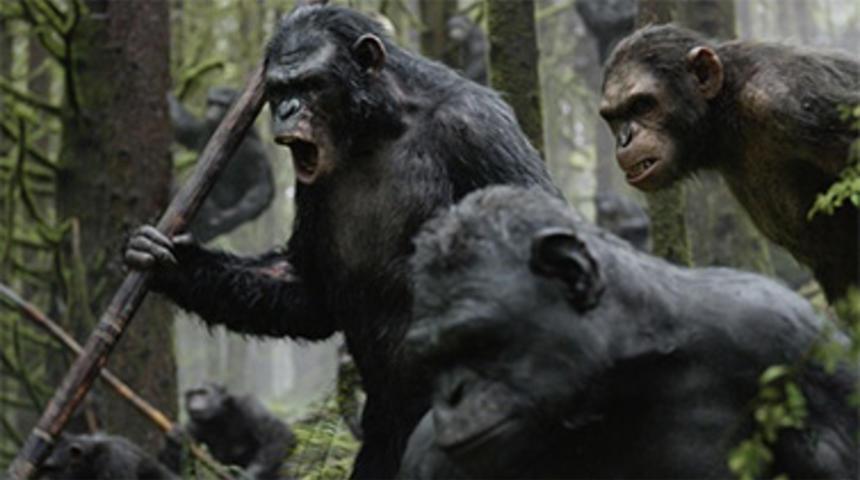 Box-office québécois : L'aube de la planète des singes conserve le premier rang