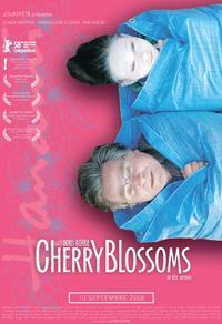 Cherry Blossoms - Un rêve japonais