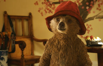 La sortie de Paddington et Hot Tub Time Machine 2 retardée