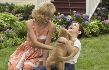 A Dog's Purpose : L'équipe du film accusée de cruauté envers les animaux
