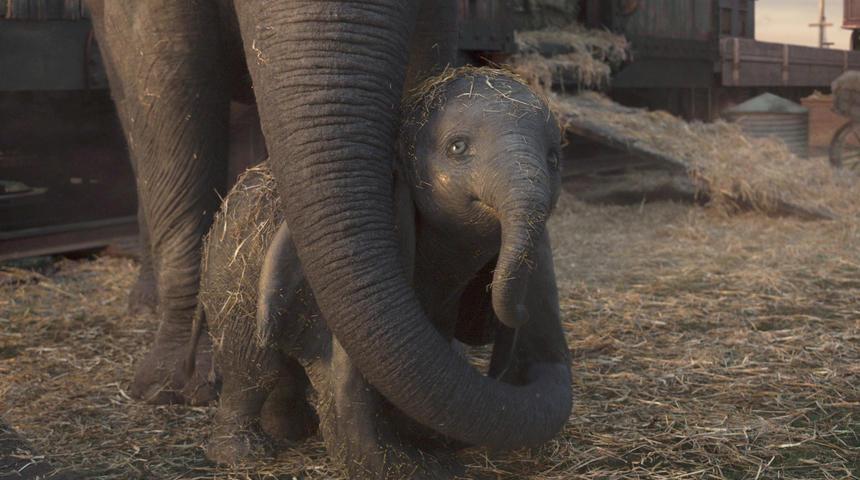Dix anecdotes sur le film Dumbo de Tim Burton