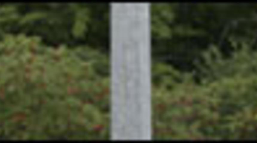 Nouveautés : Patrick Huard en Ontario, et Will Ferrell en NASCAR
